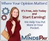 MindsPay Survey