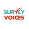 Survey Voices Earn on Demand